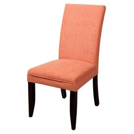Barclay Side Chair in Terra