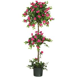 Preserved Bougainvillea Topiary