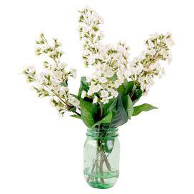 Faux White Lilac