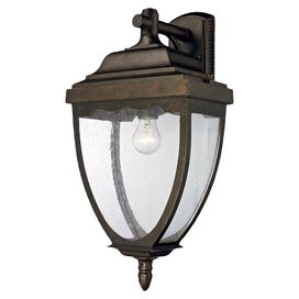 Auden Indoor/Outdoor Wall Lantern