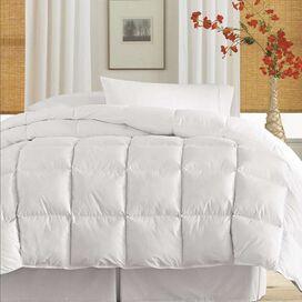Alamo Comforter