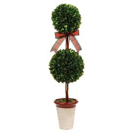 Preserved Boxwood Double Ball Topiary
