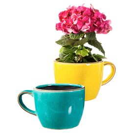 Lisa Tea Cup Planter (Set of 2)