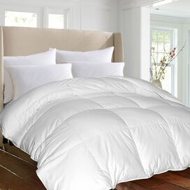 1000 Thread Count Egyptian Cotton Comforter
