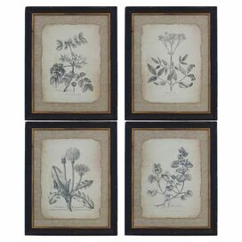 Noreen Wall Decor (Set of 4)