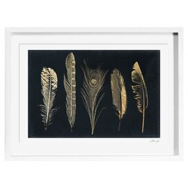 Corinthian Feathers Framed Print, Oliver Gal