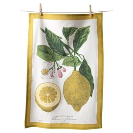 Lemon Tea Towel (Set of 4)