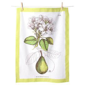 Pear Tea Towel (Set of 4)