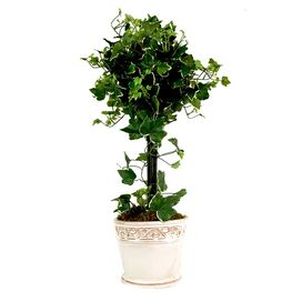 Faux Ivy Topiary