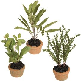 Faux Herbs, New Growth Designs (Set of 3)