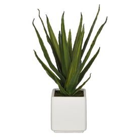 Faux Aloe Plant