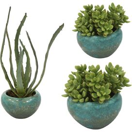 3-Piece Faux Succulent Set