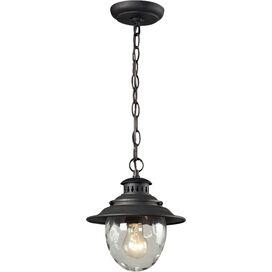 Wendell Outdoor Hanging Lantern