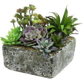 Faux Succulent Garden