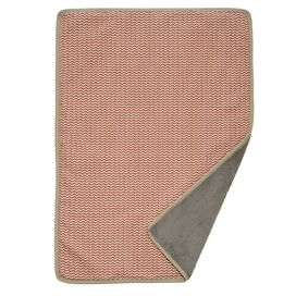 Double-Sided Pet Blanket in Red