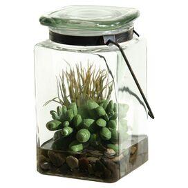 Faux Easter Grass & Sedum Terrarium