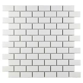 Metro Indoor/Outdoor Subway Tile in White (Set of 10)