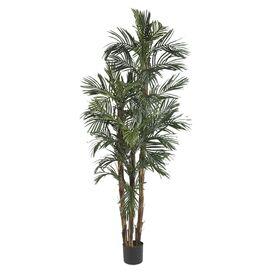Faux Robellini Palm