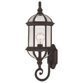 Lily Indoor/Outdoor Wall Lantern